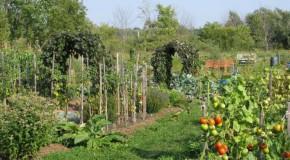 Jardinez au naturel